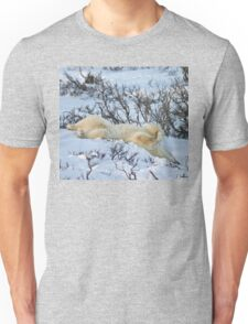 Yoga Bear slide Unisex T-Shirt