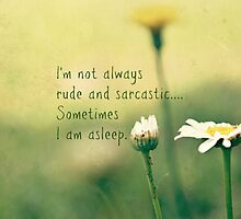 Sometimes I am Asleep by Scott Mitchell