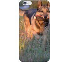 Fetch Zeus by Byron Croft, Croft Photography iPhone Case/Skin