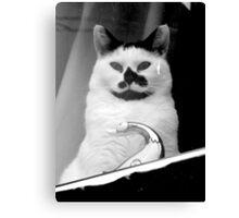 Cat Face Canvas Print