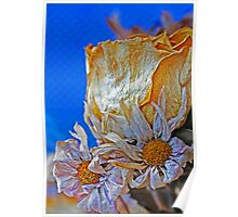Dry Flower 2 Poster