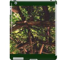 1:14 iPad Case/Skin
