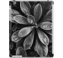 After the rain (AGRB00001) iPad Case/Skin
