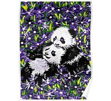 Panda Cubs in Purple Poster