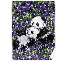 Panda Cubs in Purple Poster