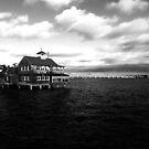 San Diego Bay by Kimberly Palmer