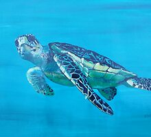 Sea Turtle by BluGeckos