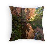 Coyote Gulch Canyon Reflection - Utah Throw Pillow