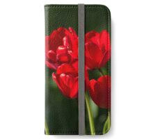 Longing for Love iPhone Wallet/Case/Skin