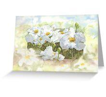Mantilla poppies Greeting Card