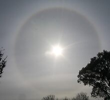 Sun Halo by laurajane82