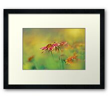Don't judge each day by the harvest you reap but by the seeds that you plant. Robert Louis Stevenson ... Framed Print