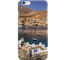 A barbeque with a view iPhone Case/Skin