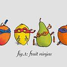 Fruit Ninja Turtles by moritzstork