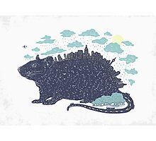 City Rat Photographic Print