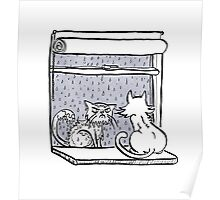 Window Cats Poster