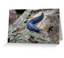 blue slug Greeting Card