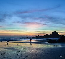 Sunset at Pfiffer Beach by Bopacin