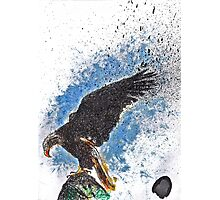 Scribble Ink Eagle Photographic Print