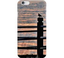the fence posts iPhone Case/Skin