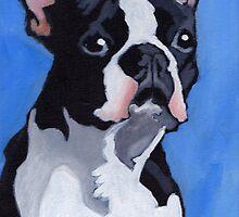 Boston Terrier by Anna Davies