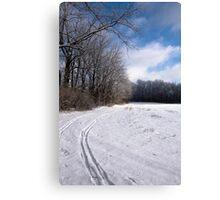 Tracks through Snowy Field Canvas Print