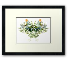 Moth with Plants Framed Print