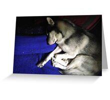 Sleeping Husky Puppy Greeting Card
