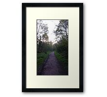 Forest walk Framed Print