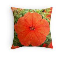 African Sunset  (Petunia Pellets) Throw Pillow
