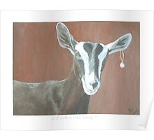 Goat Painting in Girl with a Pearl Earring series Poster
