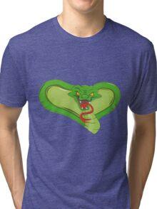 Snake Illustration Tri-blend T-Shirt
