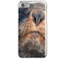 Inquisitive iPhone Case/Skin