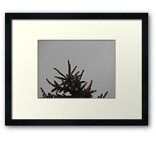 Desolate Winter  Framed Print