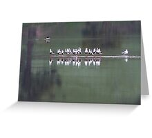 Banded Stilts Greeting Card