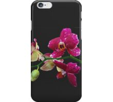 Pink Orchid, Black Phone Case iPhone Case/Skin