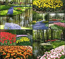 A Dutch Spring Collage - Keukenhof Gardens by MidnightMelody