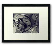 FireHiFri Framed Print