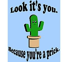 You're a Prick. Photographic Print