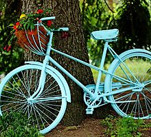 Blue Garden Bicycle by Debbie Oppermann