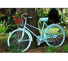 Blue Garden Bicycle Photographic Print
