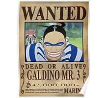 Wanted One Piece Poster
