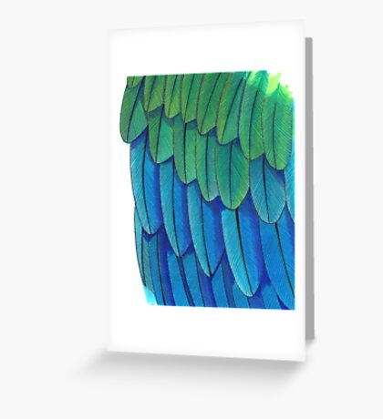 Blue Macaw Feathers pattern Greeting Card