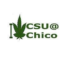 I Love California State University at Chico by Ganjastan