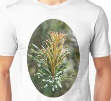 Native Australian Flower Unisex T-Shirt