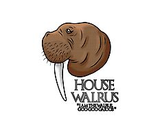 House Walrus Photographic Print