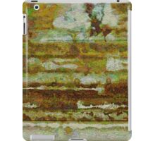 Strata with Distant Trees iPad Case/Skin