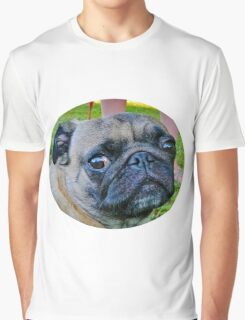 Pugs Rule Graphic T-Shirt