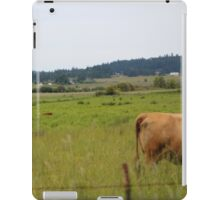 Cows in a field iPad Case/Skin