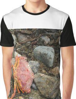 Crab Graphic T-Shirt